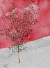 Rosor 1. Experimentell akvarell. Winsor & Newton, 300 gr kallpressad A3